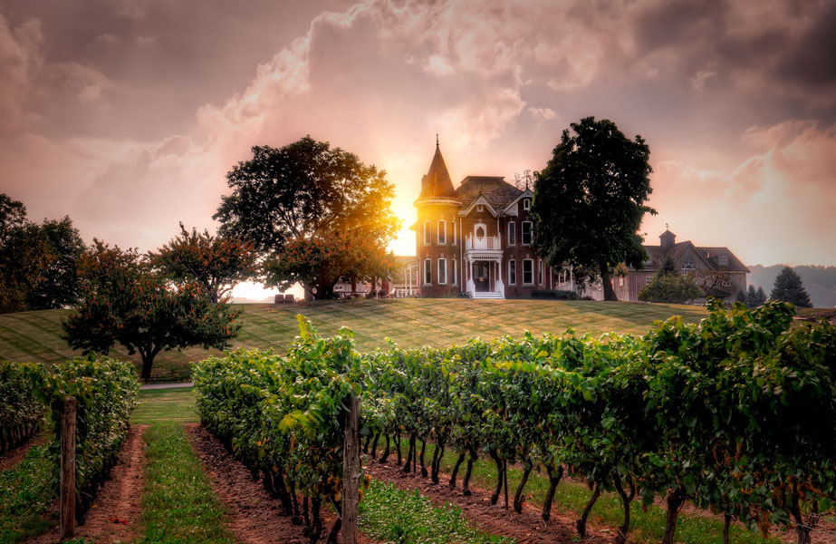 Niagara Region: A Perfect Place for a Wine Tour