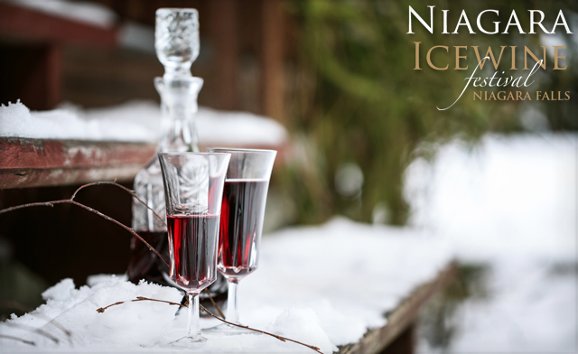 Ice Wine Tour Niagara On The Lake