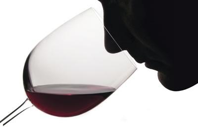 smell of wine   wine tasting