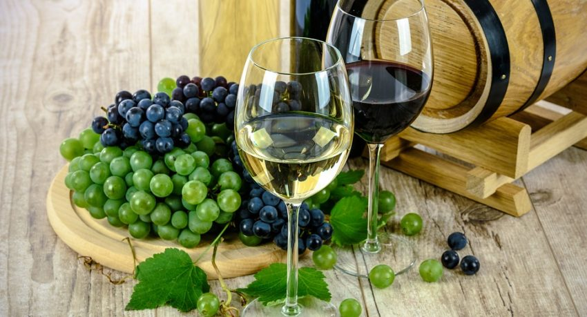 introduction to wine