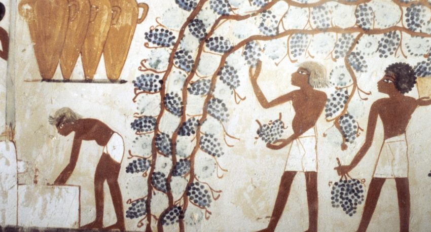 history of wine making
