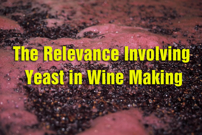 The Relevance Involving Yeast in Wine Making