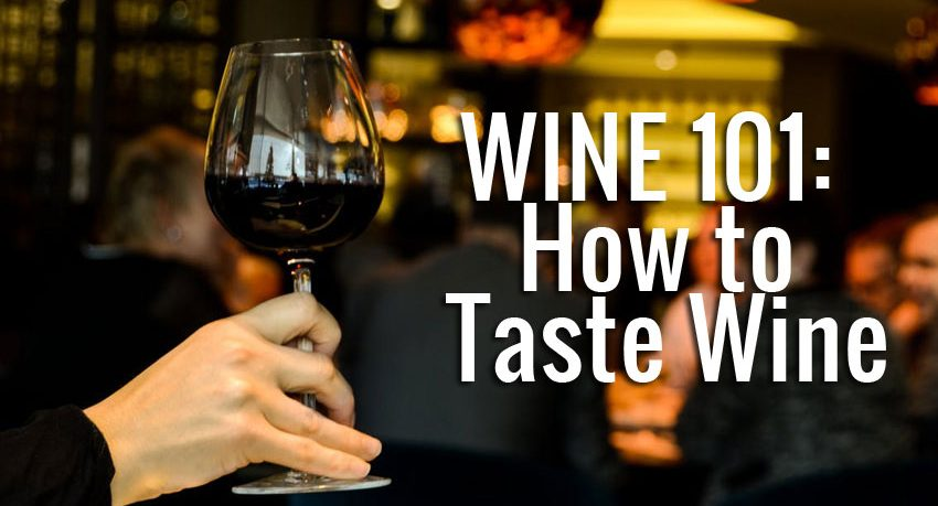 wine 101 how to taste wine